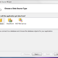 Data Storage in Visual Studio LightSwitch